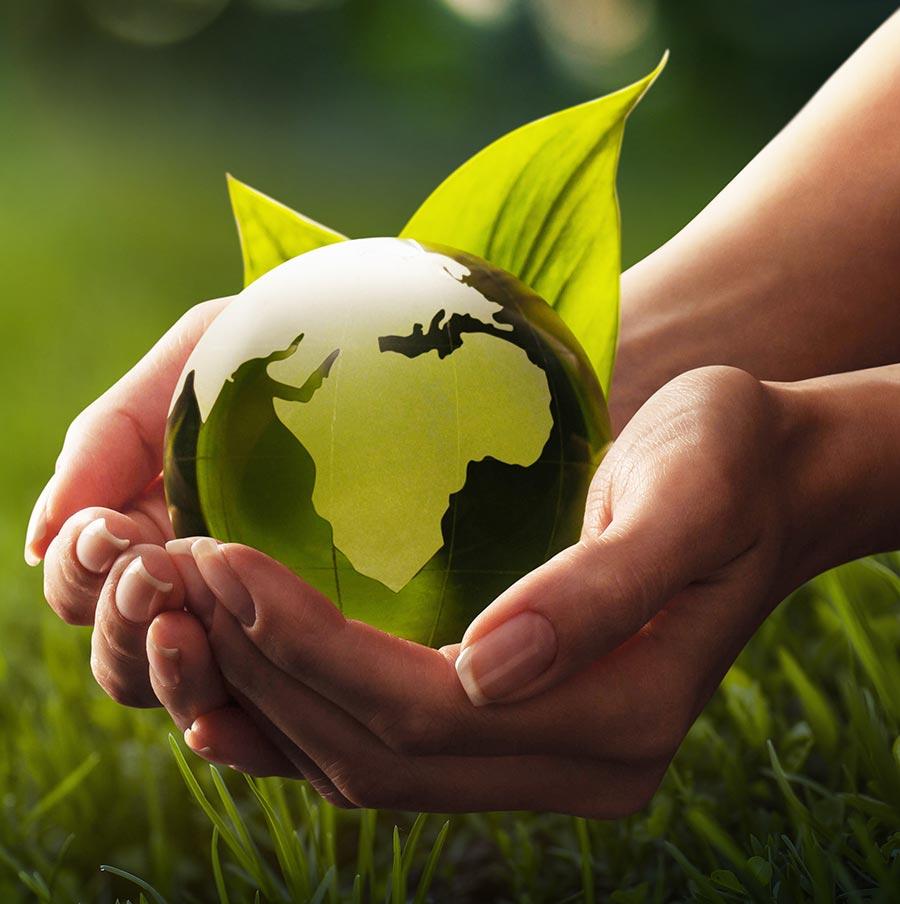 SEG Unternehmen Umweltschutz